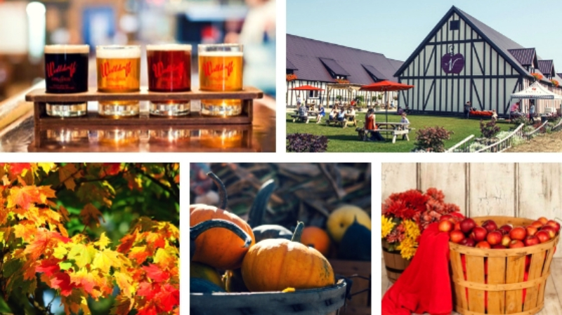 The Ultimate Fall Bucket List for West Michiganders (w/ the West Michigan Tourist Association) 7